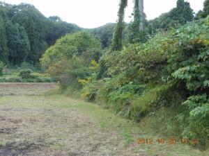 2012-10-20DSCN9775