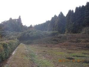 2012-11-12DSCN0300