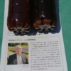 今年のヤーコン栽培で、「土帰・土輝」という土壌活性液を使っています-2020-05-08