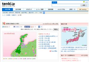 桜開花情報(石川県)