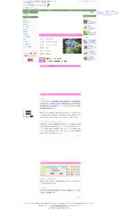 ハーブ ボリジの育て方、効果・効能など|ハーブのホームページ
