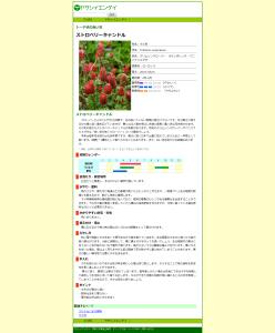 ストロベリーキャンドルの育て方 |ヤサシイエンゲイ