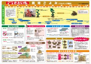 FireShot Capture -  - http___www.ja-alps.jp_entry-img_satoimo.pdf