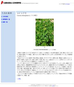 エビスグサ Cassia obtusifolia L. (マメ科) 今月の薬草 社団法人日本薬学会
