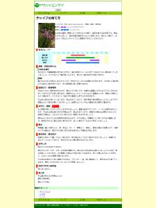 チャイブの育て方|ヤサシイエンゲイ 2014-06-30 21-35-47